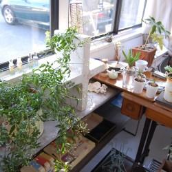 葉山の美容室 ジャウナ